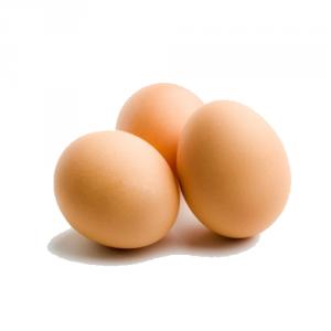 hens_eggs7
